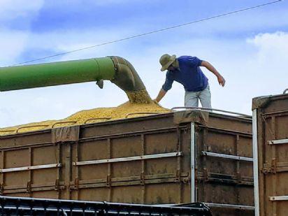 Água Boa produziu mais de 11 milhões de sacas de soja na safra 2020/21