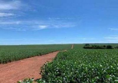Sesp-MT promove leilão de fazenda e imóveis apreendidos em ações de combate ao crime