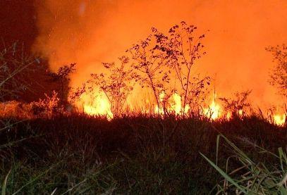 Mato Grosso registra mais de 12 mil focos de queimadas entre janeiro e agosto de 2021