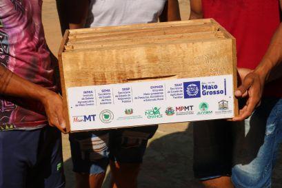Governo de Confresa recebe caixas de abelhas que serão distribuídas entre agricultores familiares e povos indígenas