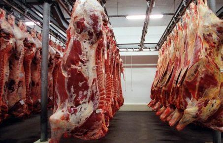 Abate de bovinos em Mato Grosso cresce em abril