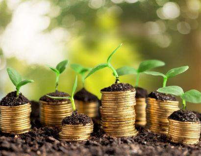 Produtores ganham mais prazo para parcelamento de dívidas do Funrural