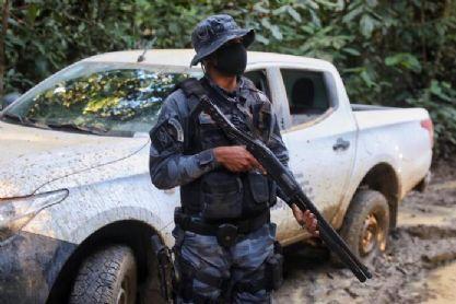 Municípios que mais desmatam em Mato Grosso são principais alvos da Operação Amazônia; Querência na lista