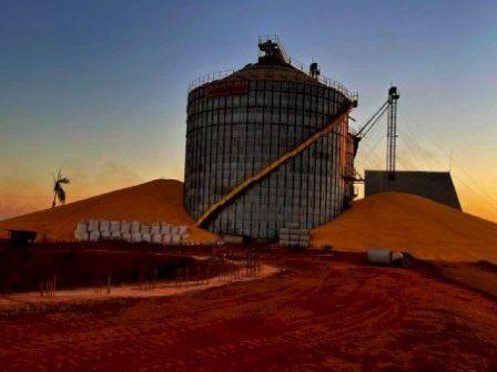 Silo fica abarrotado e 320 mil sacas de milho ficam do lado de fora em São José do Xingu