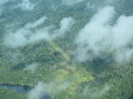 Xingu fecha primeiro semestre com piores taxas de desmatamento em três anos