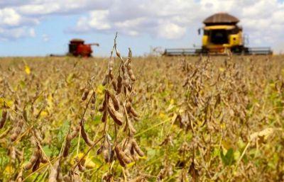 Levantamento de dados aponta que Santana do Araguaia já é o maior exportador de soja do Pará