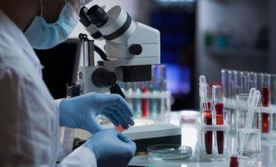 OMS já identificou 13 novas variantes do coronavírus