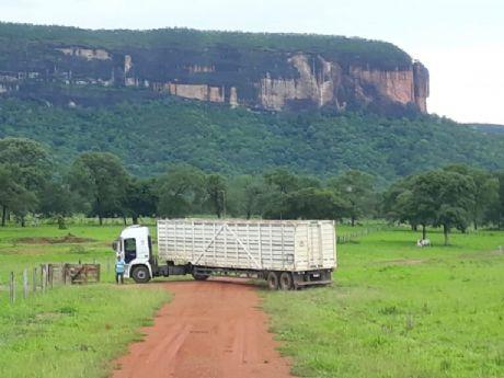 Confira locais perto de Confresa com atoleiros que dificultam transporte do gado